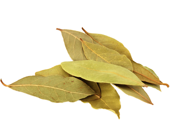 bay_leaves_dry