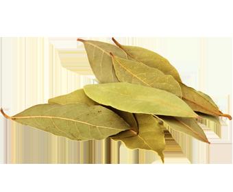 bay_leaves_dry